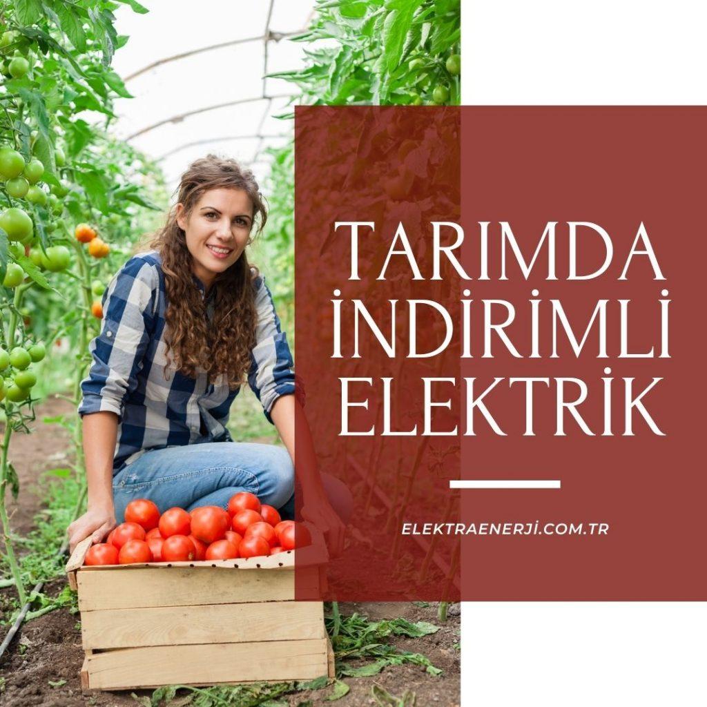 Tarım İçin Elektrik